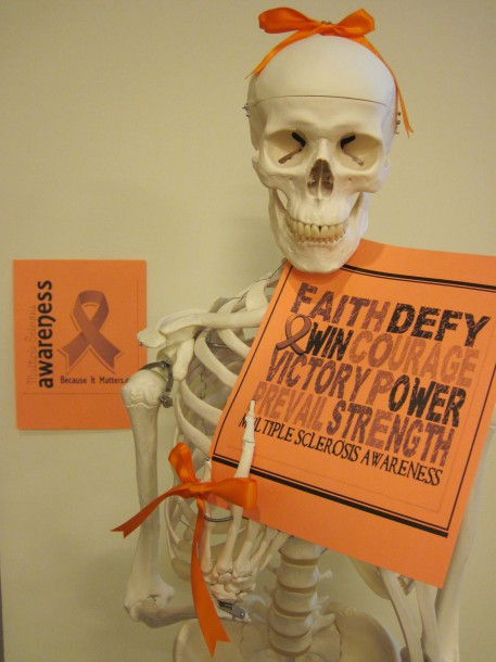 Image courtesy of Jaclyn Beck The PA program used orange ribbons to raise awareness for MS.